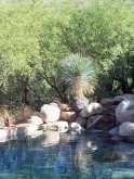SanteFe14-Pool-corner