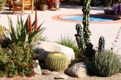 plantscape-patio