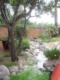 Passive Water Harvesting